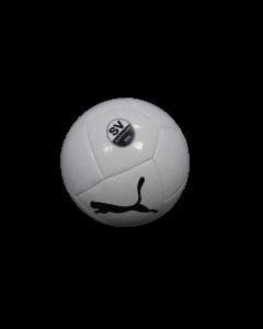 Puma Ball Logo 20/21