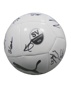 Puma Ball Logo 20/21 signiert